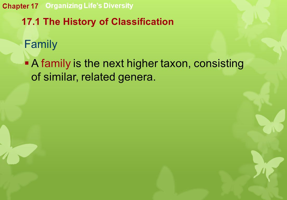  A family is the next higher taxon, consisting of similar, related genera.