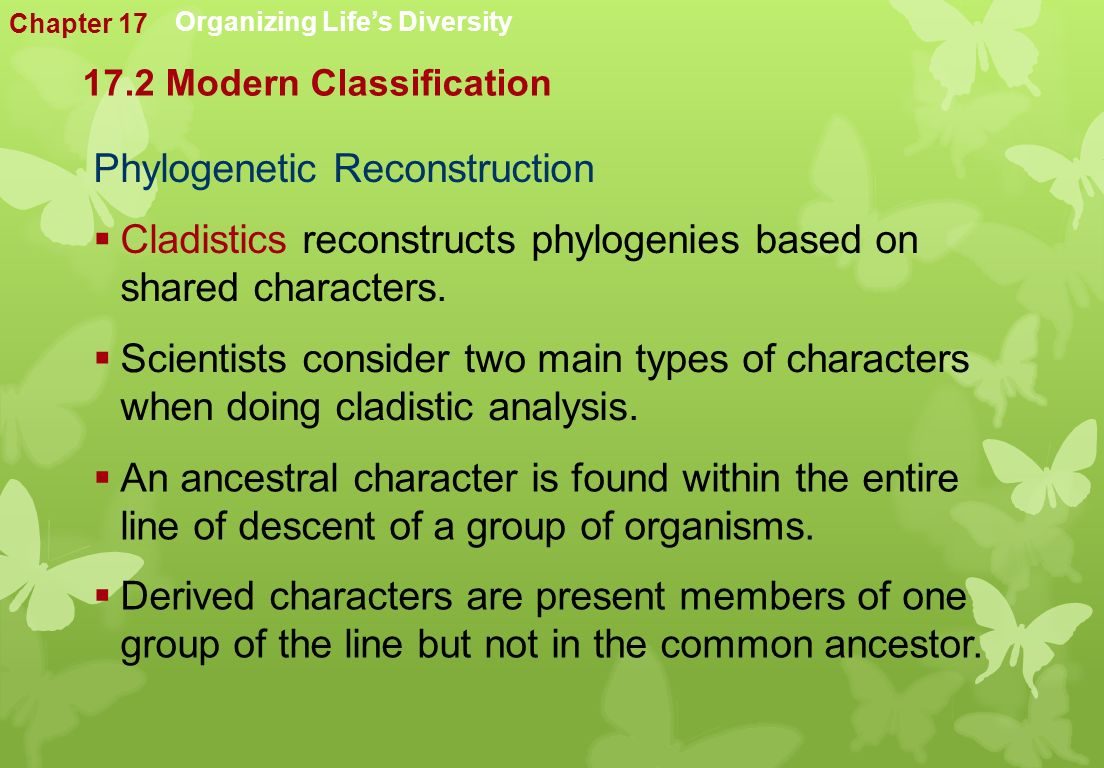 Phylogenetic Reconstruction Organizing Life's Diversity  Cladistics reconstructs phylogenies based on shared characters.