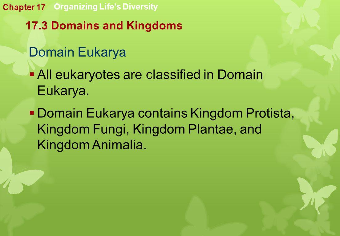 Domain Eukarya  All eukaryotes are classified in Domain Eukarya.