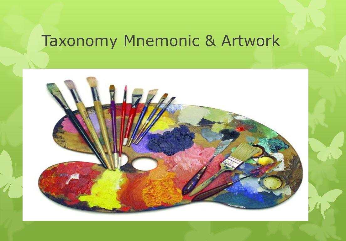 Taxonomy Mnemonic & Artwork