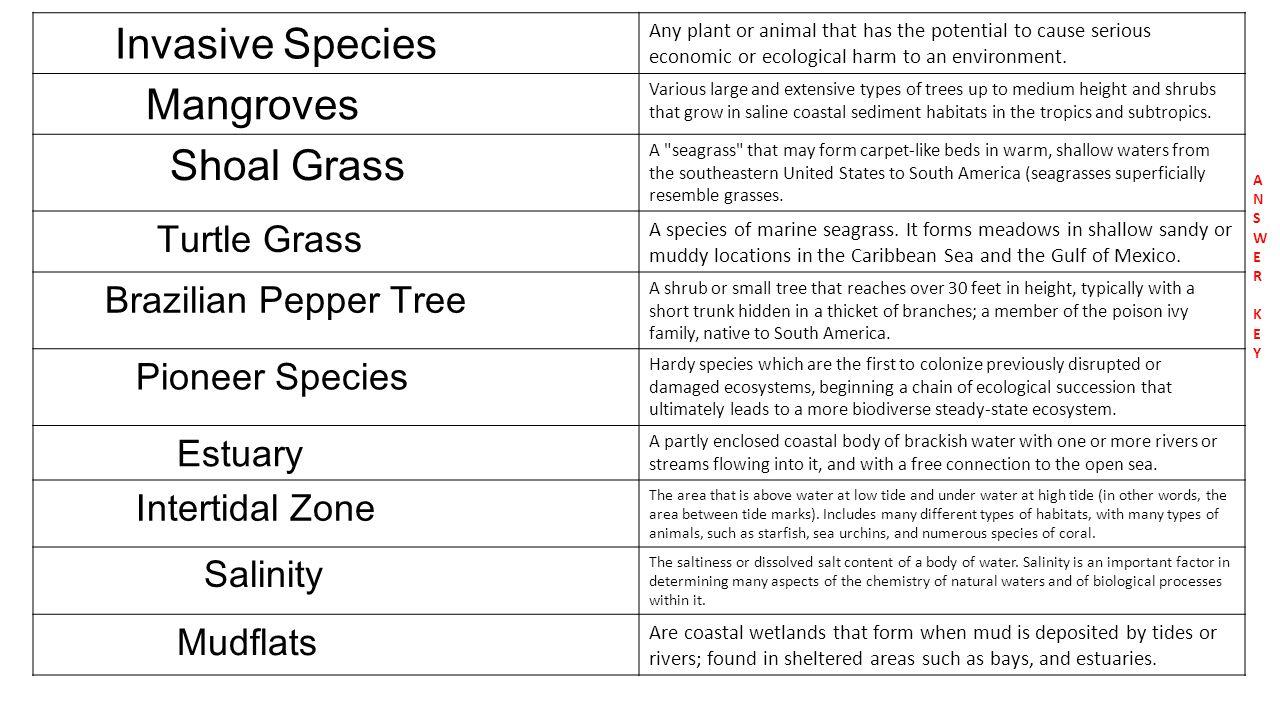 Invasive species vocabulary sort invasive species a shrub or 3 invasive robcynllc Gallery
