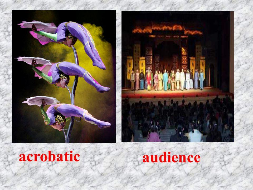 acrobatic audience
