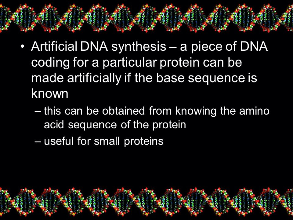 Artificial DNA synthesis – a piece of DNA coding for a particular protein can be made artificially if the base sequence is known –this can be obtained from knowing the amino acid sequence of the protein –useful for small proteins