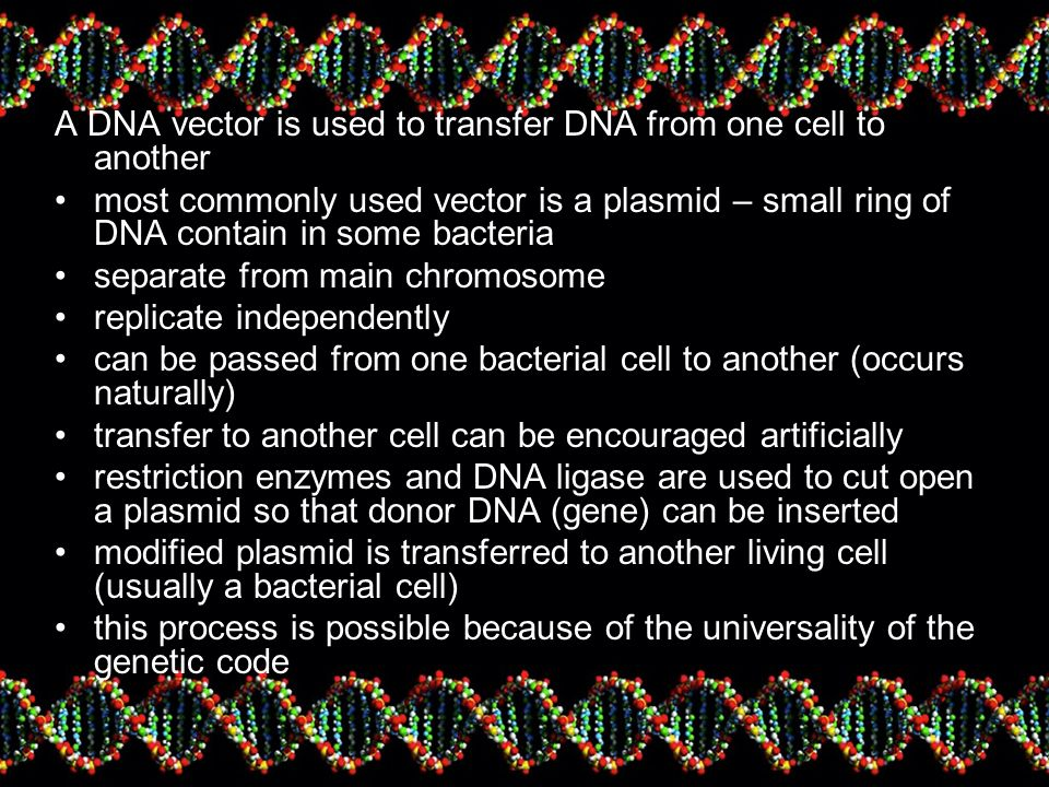 A DNA vector is used to transfer DNA from one cell to another most commonly used vector is a plasmid – small ring of DNA contain in some bacteria separate from main chromosome replicate independently can be passed from one bacterial cell to another (occurs naturally) transfer to another cell can be encouraged artificially restriction enzymes and DNA ligase are used to cut open a plasmid so that donor DNA (gene) can be inserted modified plasmid is transferred to another living cell (usually a bacterial cell) this process is possible because of the universality of the genetic code