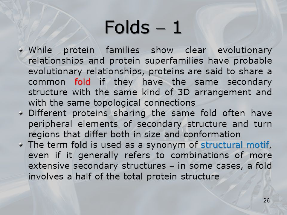 Folds  1 fold While protein families show clear evolutionary relationships and protein superfamilies have probable evolutionary relationships, proteins are said to share a common fold if they have the same secondary structure with the same kind of 3D arrangement and with the same topological connections Different proteins sharing the same fold often have peripheral elements of secondary structure and turn regions that differ both in size and conformation foldstructural motif The term fold is used as a synonym of structural motif, even if it generally refers to combinations of more extensive secondary structures  in some cases, a fold involves a half of the total protein structure 26