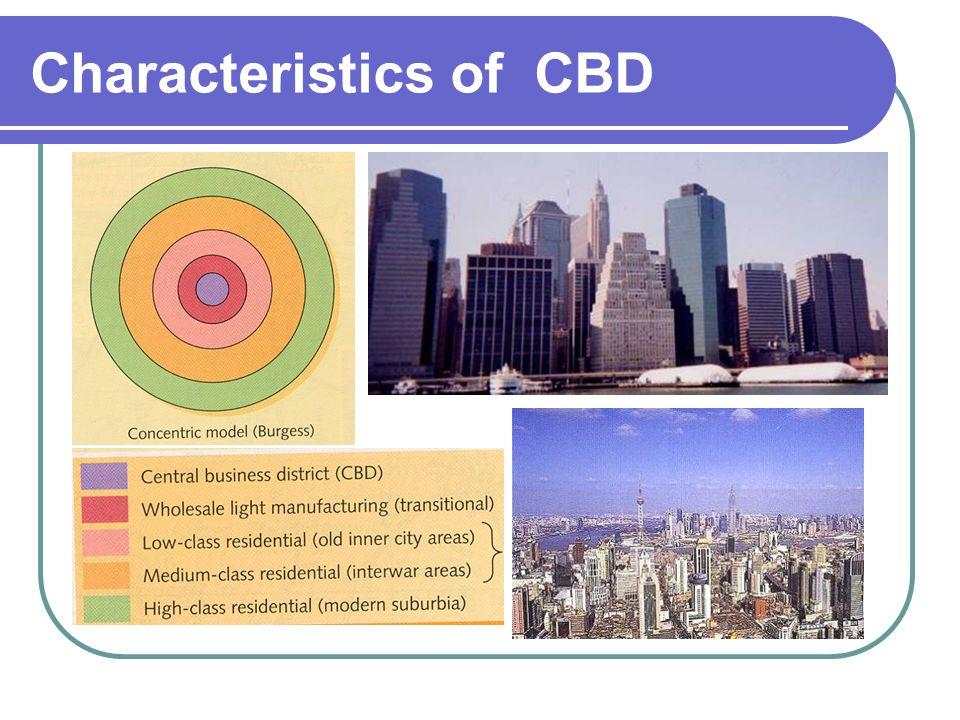 cbd coursework