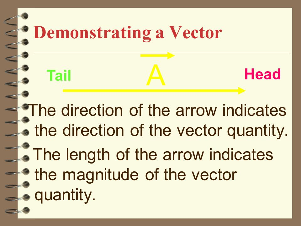 PHYSICAL QUANTITY VECTOR Has a magnitude, a unit and a direction e.g displacement, velocity, acceleration, force.