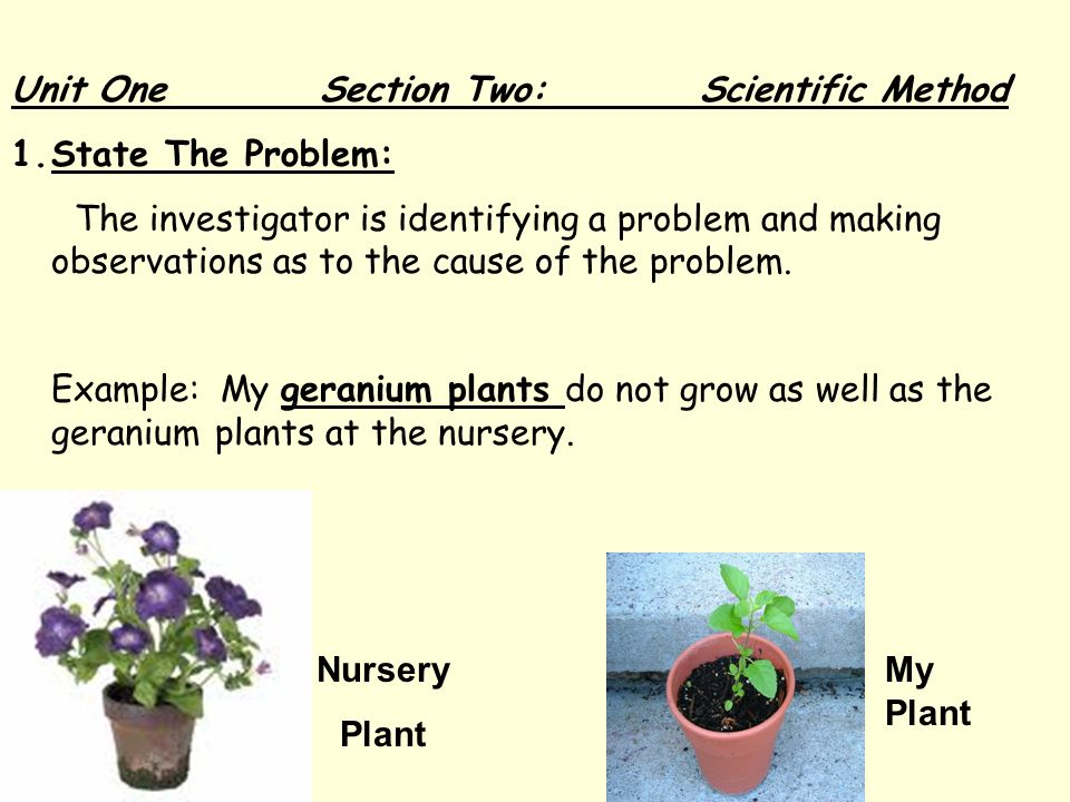 Unit One Section Two: Scientific Method 1.State The Problem: The investigator is identifying a problem and making observations as to the cause of the problem.
