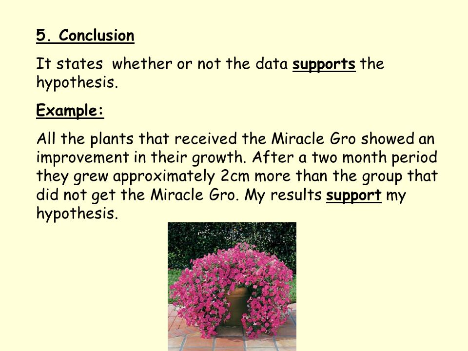 5. Conclusion It states whether or not the data supports the hypothesis.