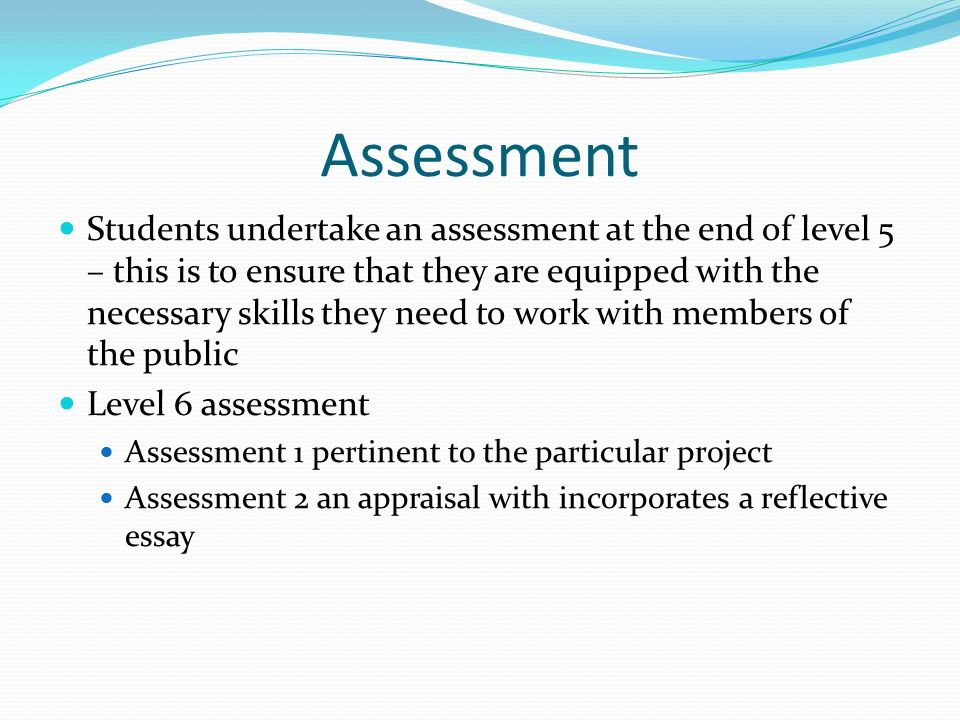 Essay On Assessment