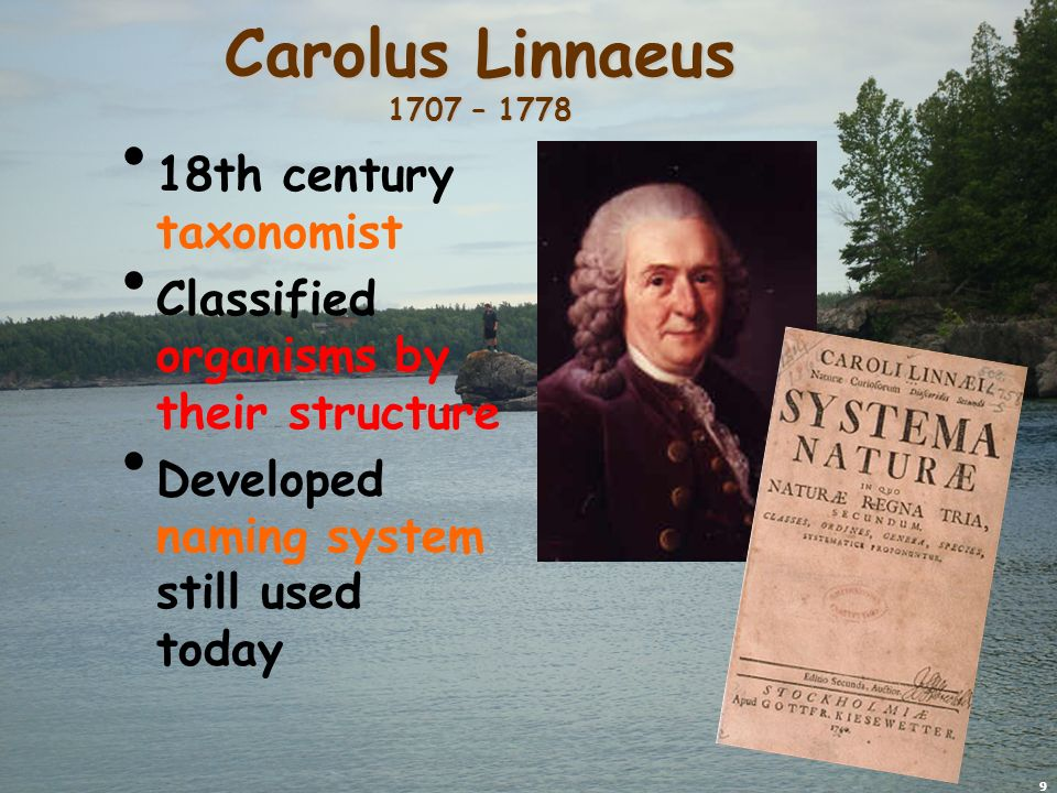 9 Carolus Linnaeus 1707 – 1778 18th century taxonomist Classified organisms by their structure Developed naming system still used today