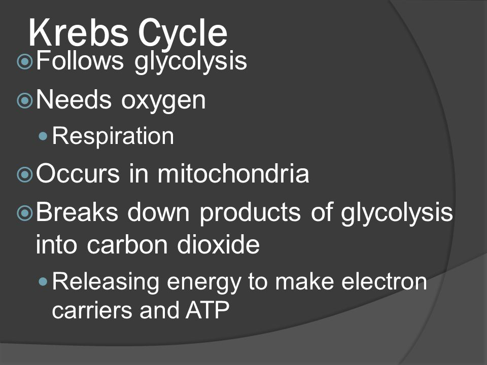 Krebs Cycle  Follows glycolysis  Needs oxygen Respiration  Occurs in mitochondria  Breaks down products of glycolysis into carbon dioxide Releasing energy to make electron carriers and ATP