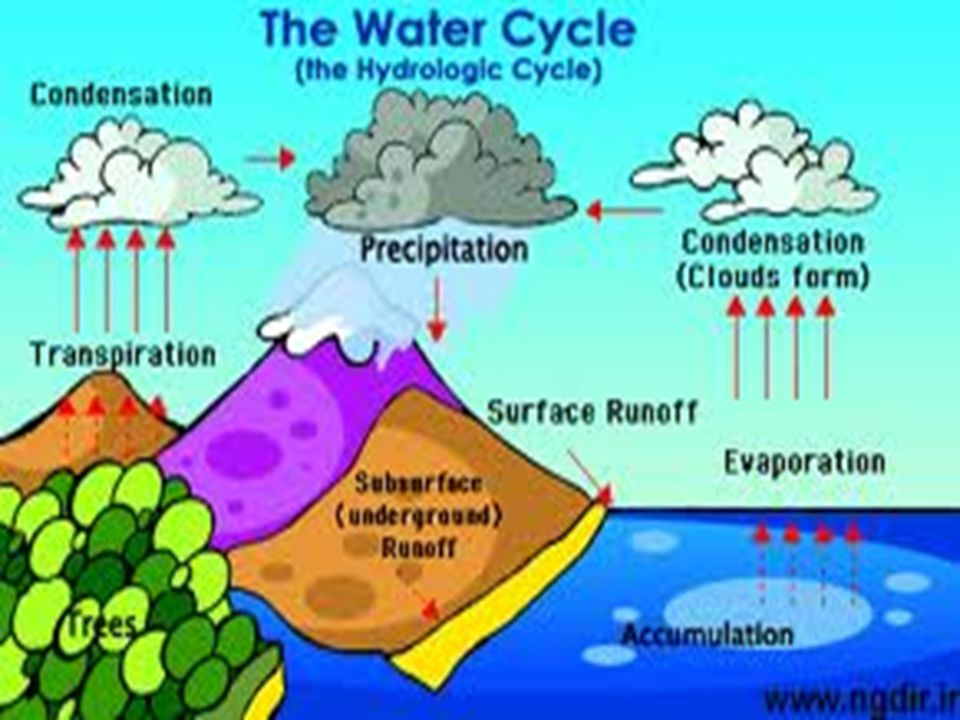 Worksheets Label  The Diagram  Of Water  Cycle water changes of state boiling evaporation condensation p6 8