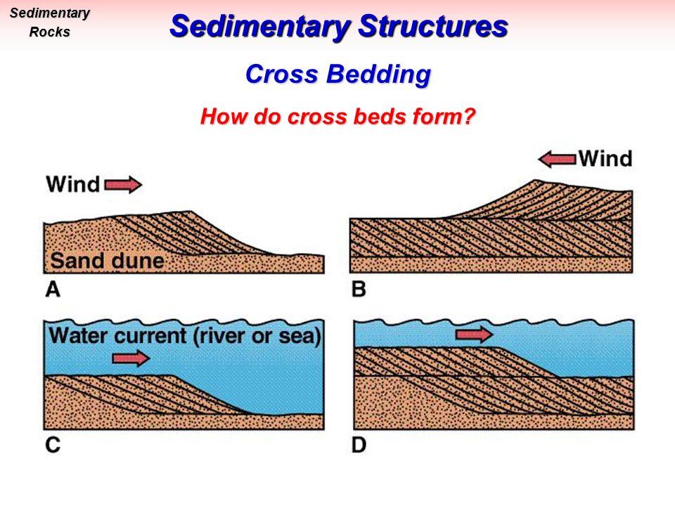 GLG Physical Geology Bob Leighty Sedimentary Rocks & Processes ...
