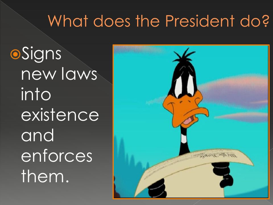  Signs new laws into existence and enforces them.