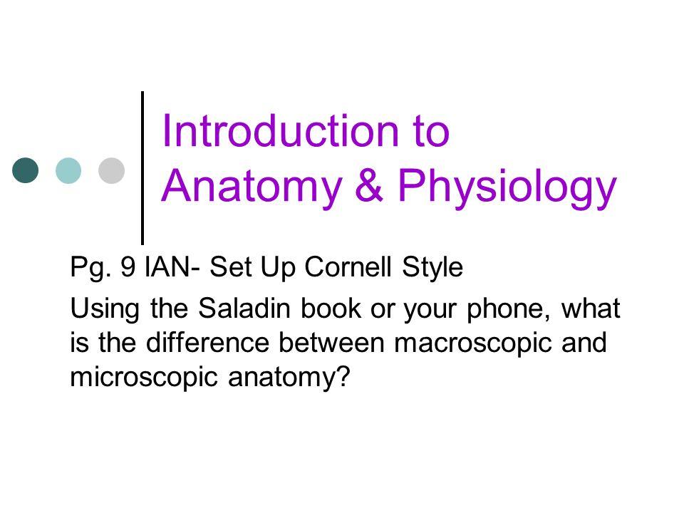 Niedlich Anatomy And Physiology Textbook Saladin Bilder ...