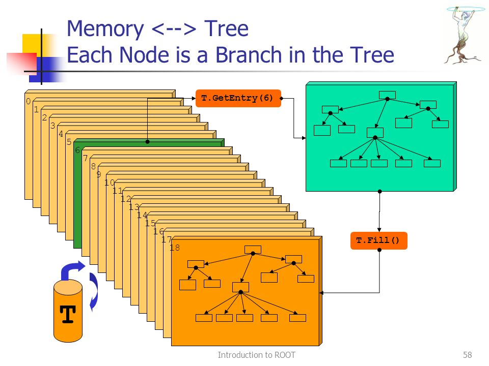 Memory Tree Each Node is a Branch in the Tree Introduction to ROOT58 0 1 2 3 4 5 6 7 8 9 10 11 12 13 14 15 16 17 18 T.Fill() T.GetEntry(6) T