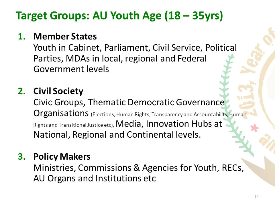 12 Target Groups: AU Youth Age (18 – 35yrs) 1.Member States Youth in Cabinet, Parliament, Civil Service, Political Parties, MDAs in local, regional and Federal Government levels 2.Civil Society Civic Groups, Thematic Democratic Governance Organisations (Elections, Human Rights, Transparency and Accountability, Human Rights and Transitional Justice etc), Media, Innovation Hubs at National, Regional and Continental levels.