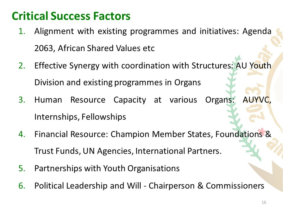 16 Critical Success Factors 1.Alignment with existing programmes and initiatives: Agenda 2063, African Shared Values etc 2.Effective Synergy with coordination with Structures: AU Youth Division and existing programmes in Organs 3.Human Resource Capacity at various Organs: AUYVC, Internships, Fellowships 4.Financial Resource: Champion Member States, Foundations & Trust Funds, UN Agencies, International Partners.