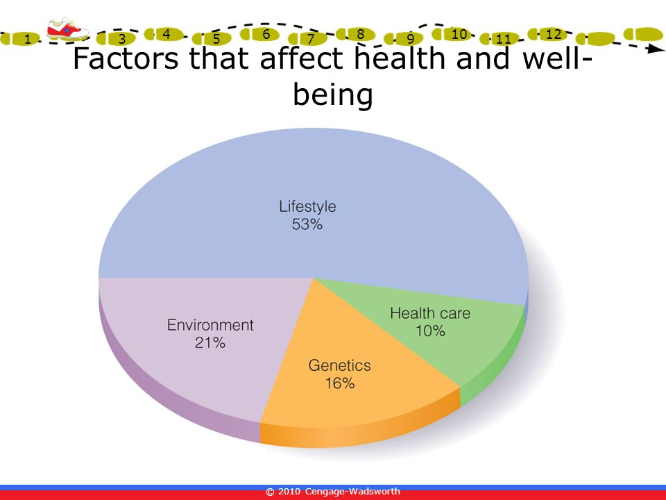 © 2010 Cengage-Wadsworth 1 2 3 4 5 6 7 8 9 10 11 12 Factors that affect health and well- being