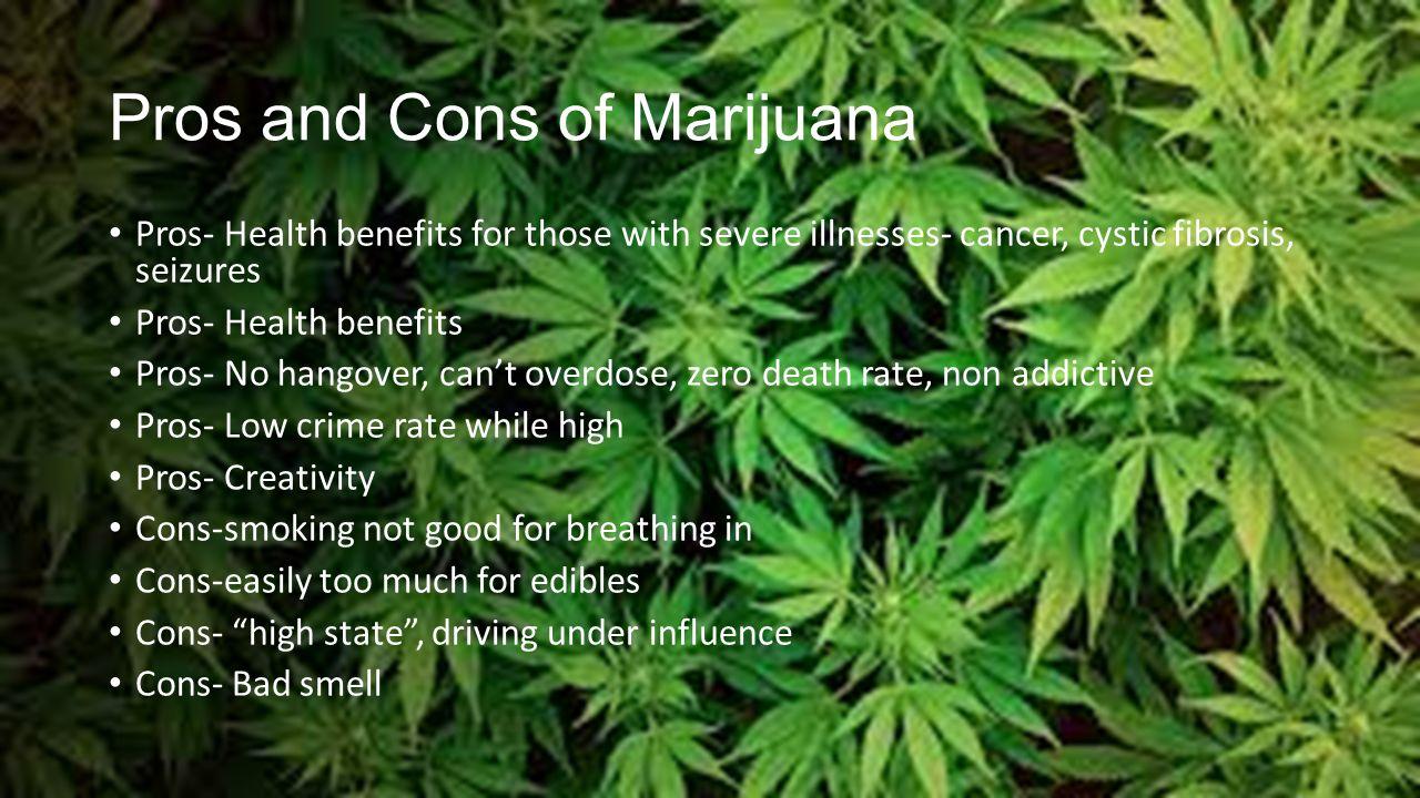 Design Pros And Cons Of Weed spiritual herb distributors rachael crosta nate ciolek kyle 6 pros and cons of marijuana