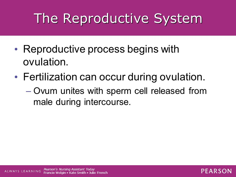 Pearson s Nursing Assistant Today Francie Wolgin Kate Smith Julie French The Reproductive System Reproductive process begins with ovulation.