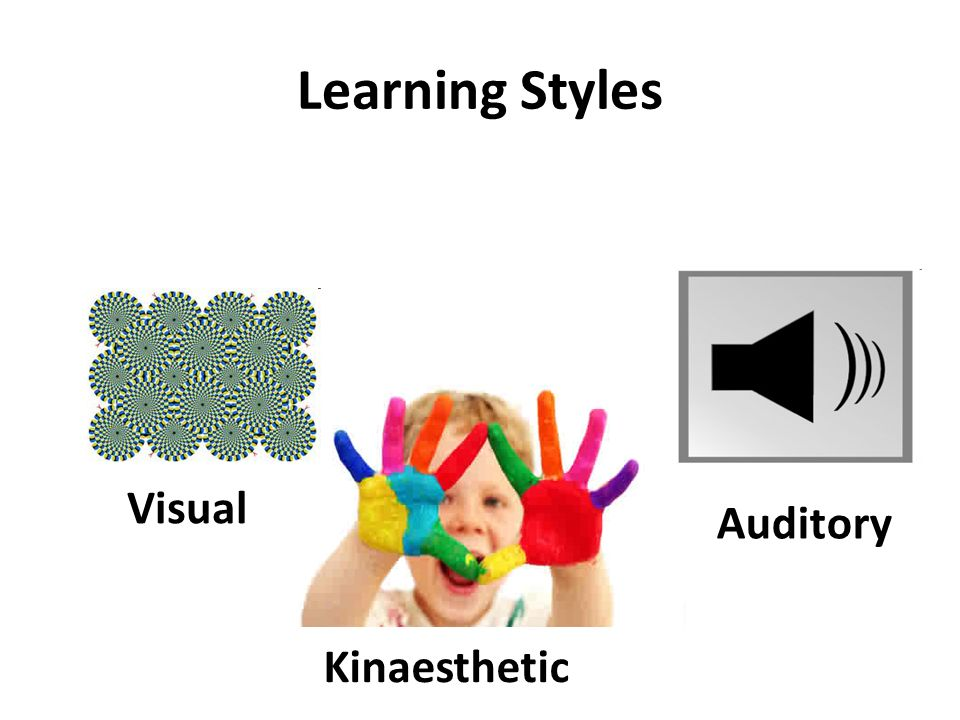 learning styles 15 essay