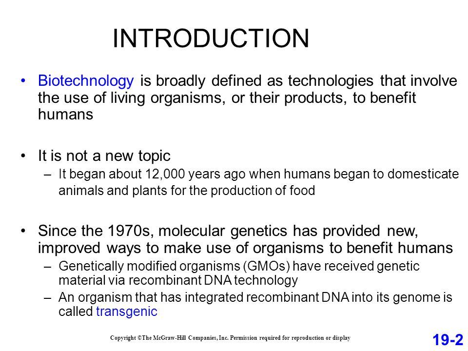 INTRODUCTION Biotechnology is broadly defined as technologies that involve the use of living organisms, or their products, to benefit humans It is not a new topic –It began about 12,000 years ago when humans began to domesticate animals and plants for the production of food Since the 1970s, molecular genetics has provided new, improved ways to make use of organisms to benefit humans –Genetically modified organisms (GMOs) have received genetic material via recombinant DNA technology –An organism that has integrated recombinant DNA into its genome is called transgenic 19-2 Copyright ©The McGraw-Hill Companies, Inc.