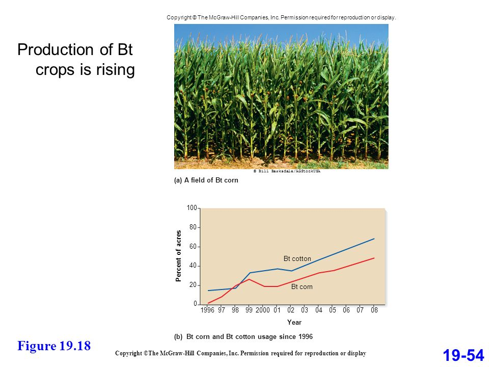 Production of Bt crops is rising Copyright ©The McGraw-Hill Companies, Inc.