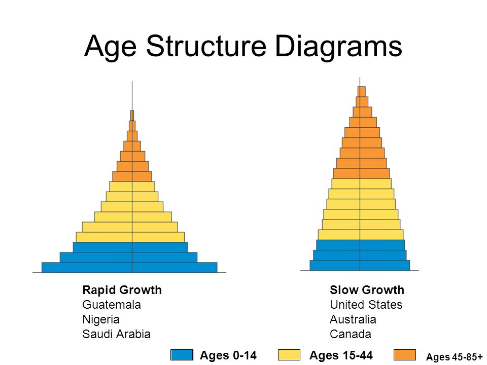 HUMAN POPULATION Growth, Demography, Carrying Capacity. - ppt download