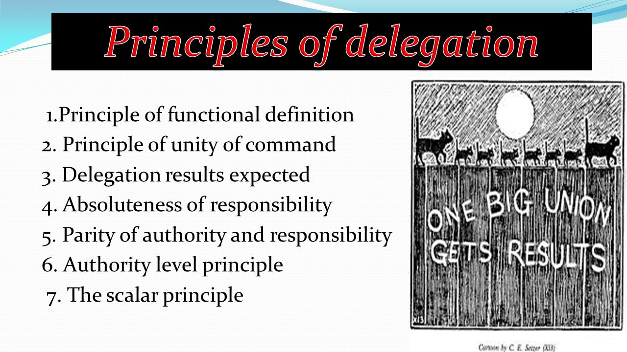 1.Principle of functional definition 2. Principle of unity of command 3.