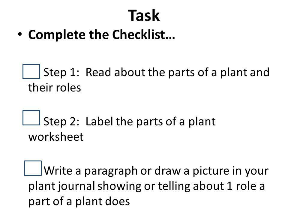 Lets Talk Plants Angelica Orantez 1 st grade Science ppt download – Parts of a Paragraph Worksheet