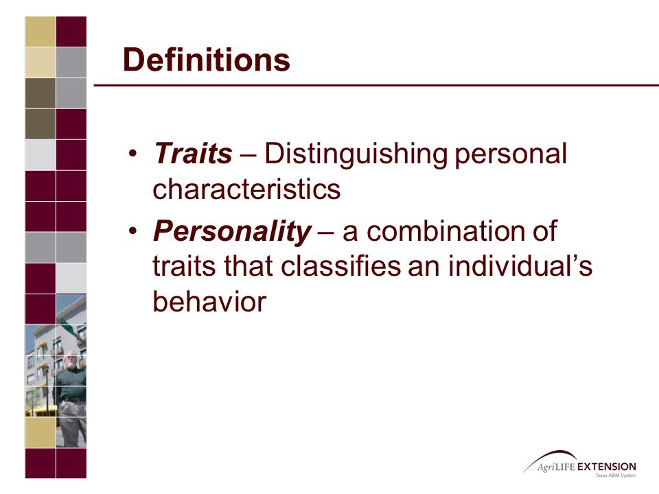 Definitions Traits – Distinguishing personal characteristics Personality – a combination of traits that classifies an individual's behavior