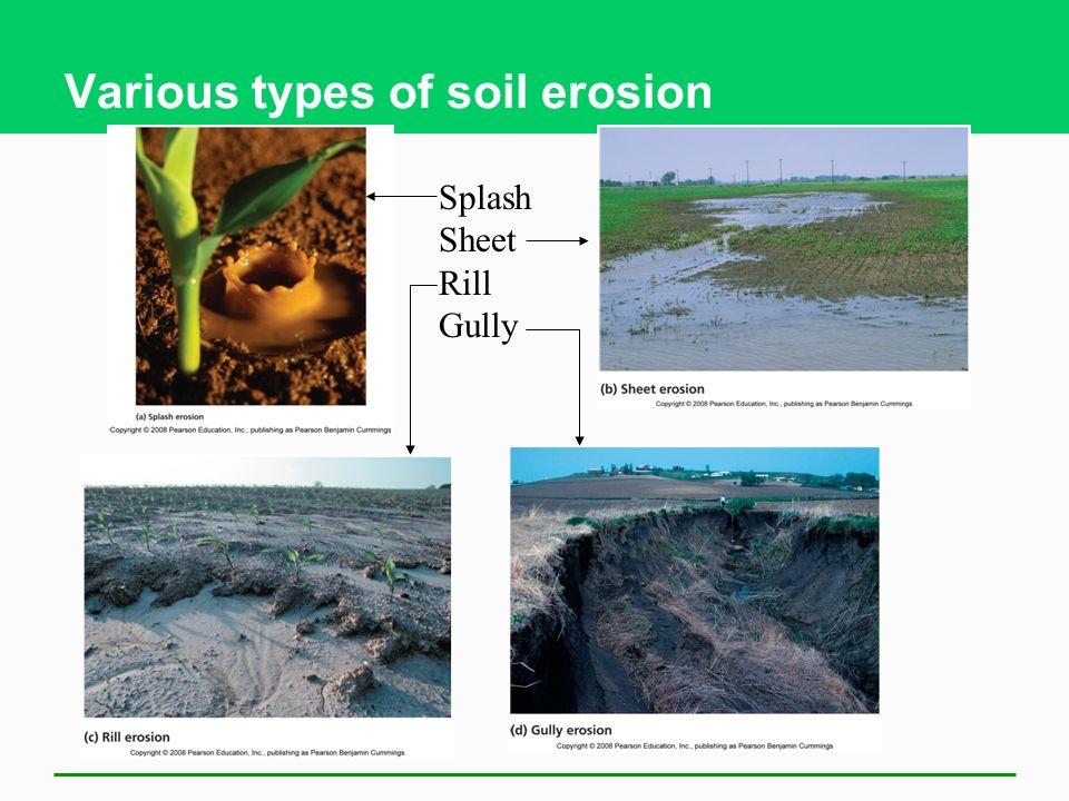 Various types of soil erosion Splash Sheet Rill Gully