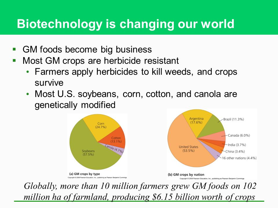 Biotechnology is changing our world  GM foods become big business  Most GM crops are herbicide resistant Farmers apply herbicides to kill weeds, and crops survive Most U.S.