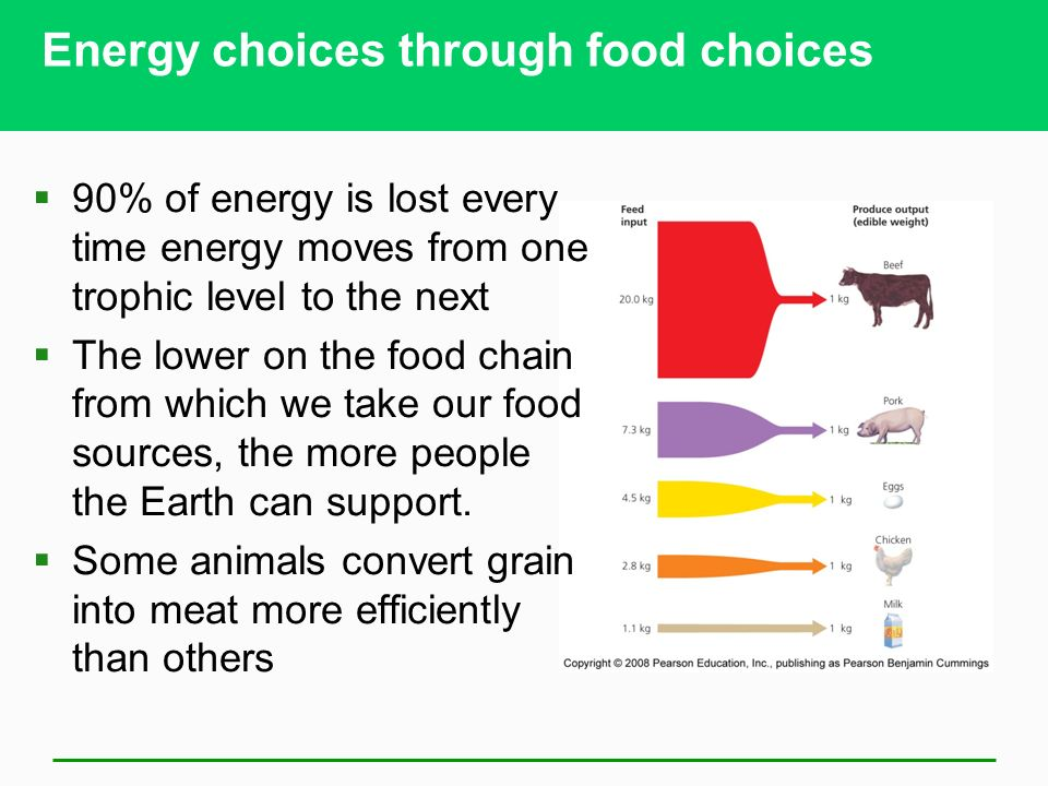 Energy choices through food choices  90% of energy is lost every time energy moves from one trophic level to the next  The lower on the food chain from which we take our food sources, the more people the Earth can support.