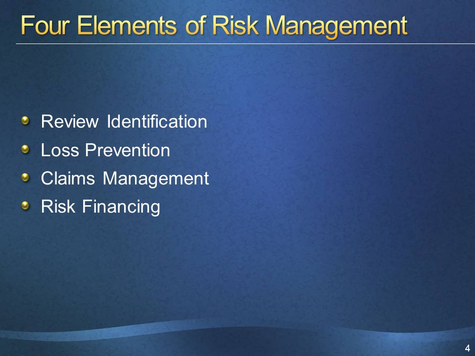 4 Review Identification Loss Prevention Claims Management Risk Financing