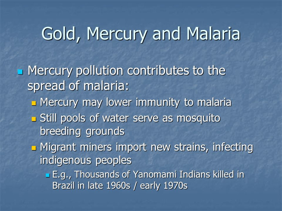 Gold, Mercury and Malaria Mercury pollution contributes to the spread of malaria: Mercury pollution contributes to the spread of malaria: Mercury may lower immunity to malaria Mercury may lower immunity to malaria Still pools of water serve as mosquito breeding grounds Still pools of water serve as mosquito breeding grounds Migrant miners import new strains, infecting indigenous peoples Migrant miners import new strains, infecting indigenous peoples E.g., Thousands of Yanomami Indians killed in Brazil in late 1960s / early 1970s E.g., Thousands of Yanomami Indians killed in Brazil in late 1960s / early 1970s