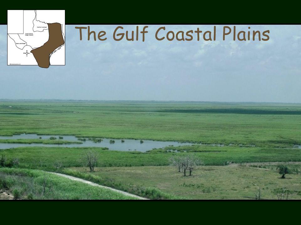 The Gulf Coastal Plains