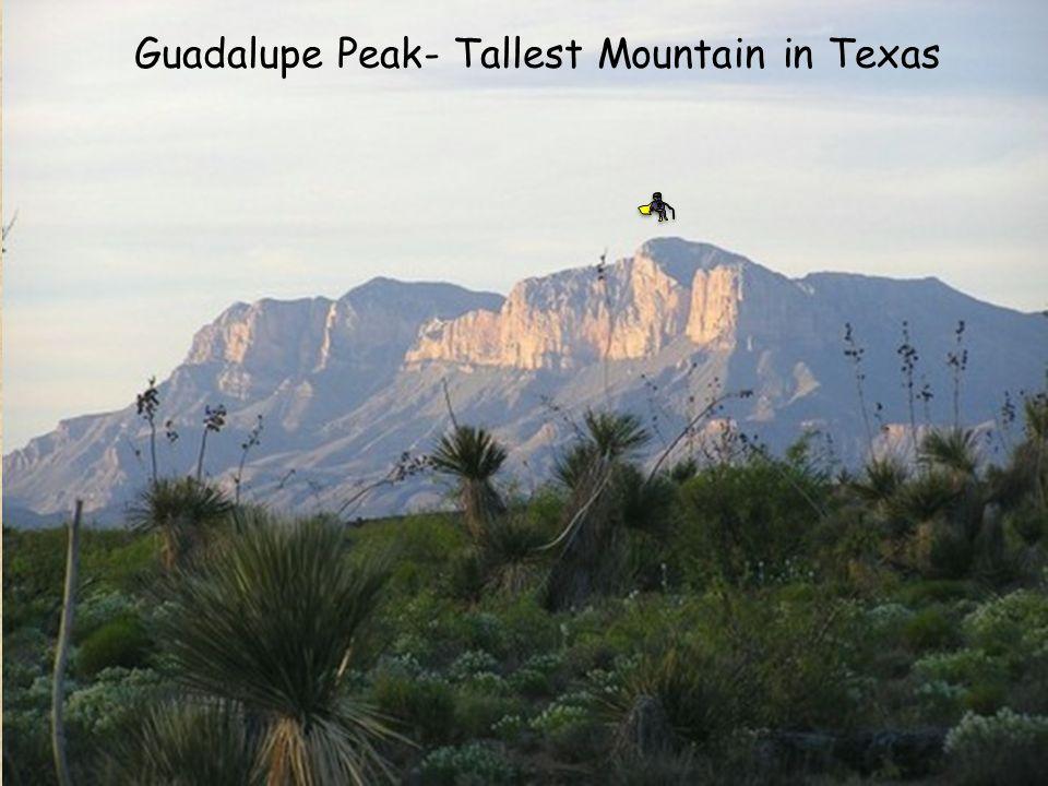 Guadalupe Peak- Tallest Mountain in Texas