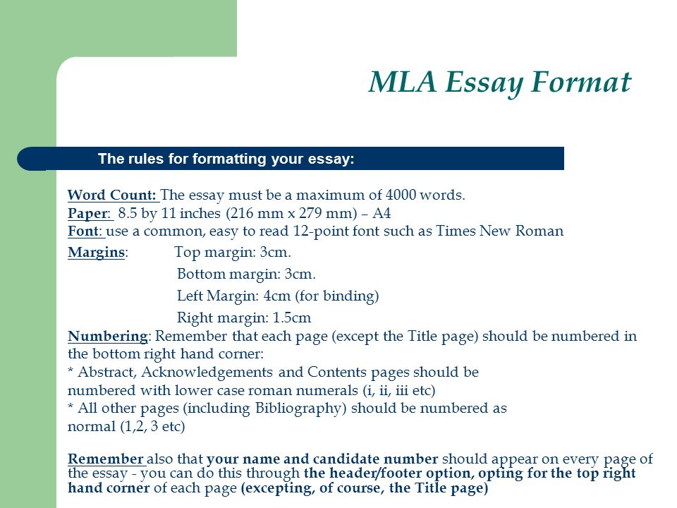 mla standard for essay