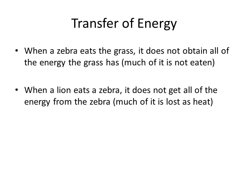 Transfer of Energy When a zebra eats the grass, it does not obtain all of the energy the grass has (much of it is not eaten) When a lion eats a zebra, it does not get all of the energy from the zebra (much of it is lost as heat)