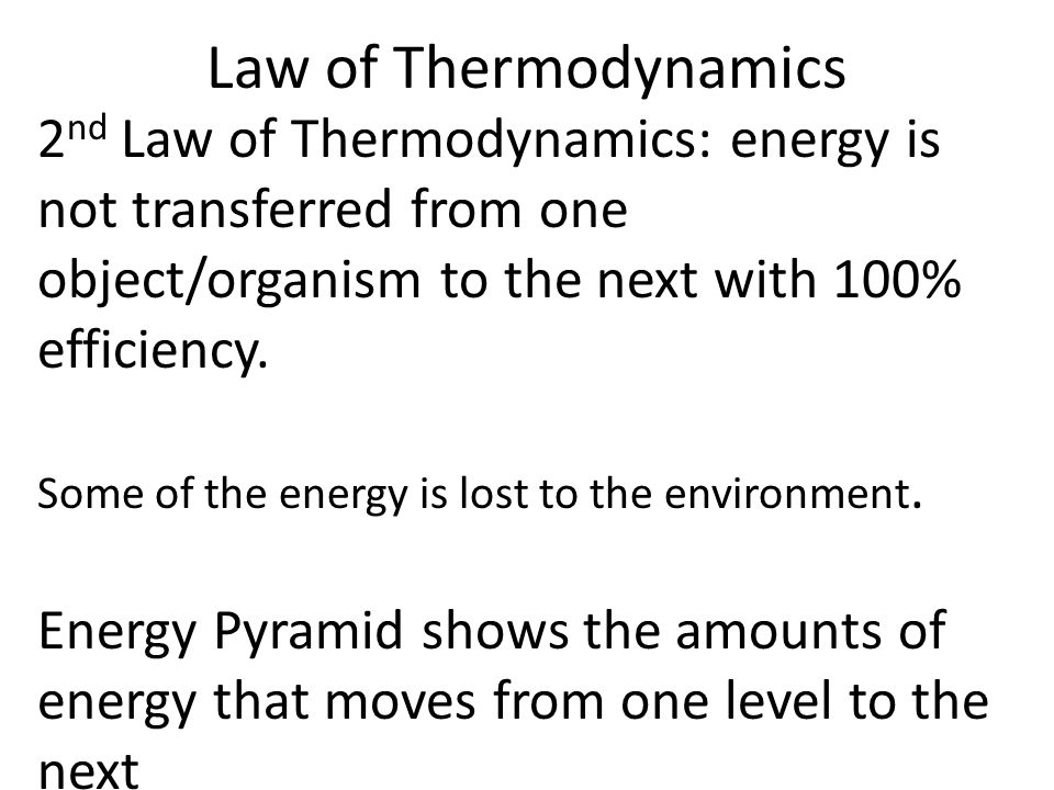 Law of Thermodynamics 2 nd Law of Thermodynamics: energy is not transferred from one object/organism to the next with 100% efficiency.