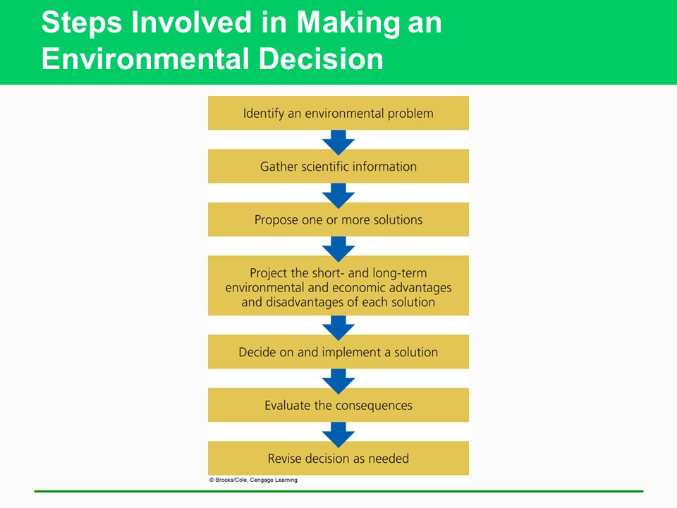 Steps Involved in Making an Environmental Decision
