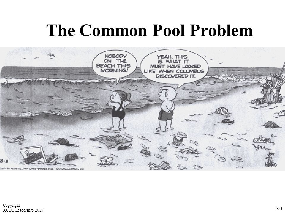 The Common Pool Problem 30 Copyright ACDC Leadership 2015