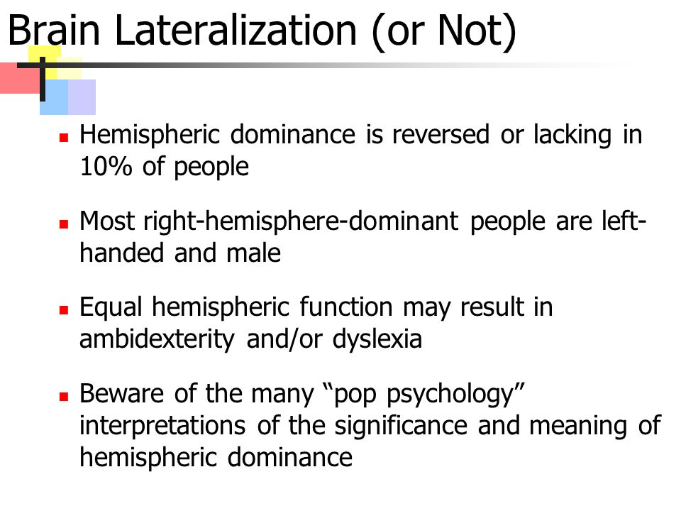 Brain Lateralization (or Not) Hemispheric dominance is reversed or lacking in 10% of people Most right-hemisphere-dominant people are left- handed and male Equal hemispheric function may result in ambidexterity and/or dyslexia Beware of the many pop psychology interpretations of the significance and meaning of hemispheric dominance