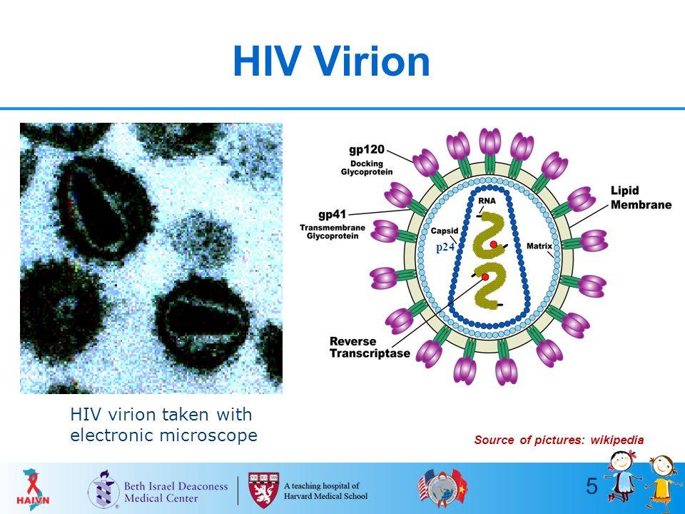 Hiv wikip