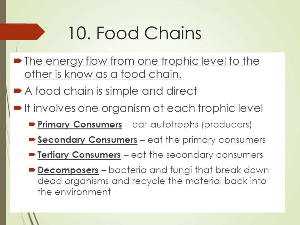 10. Food Chains  The energy flow from one trophic level to the other is know as a food chain.