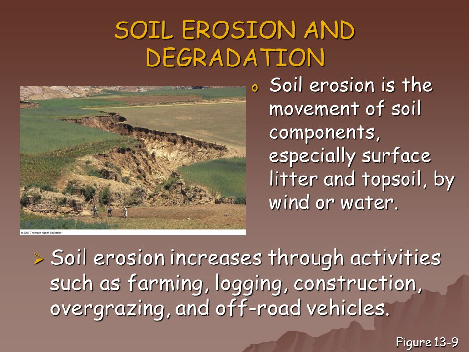 an overview of soil erosion and its devastating effects Water on the earth elaine mao water the effect of erosion on soil productivity has been societies around the world have begun to feel the devastating effects.