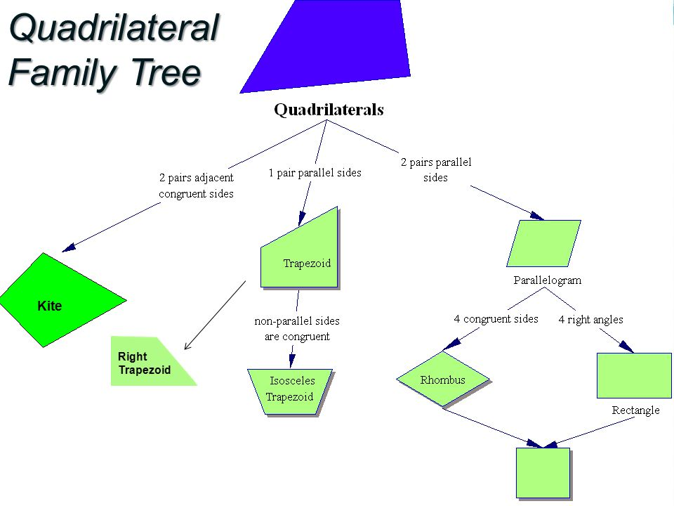 Objectives to identify any quadrilateral by name as specifically 4 quadrilateral family tree kite right trapezoid ccuart Gallery